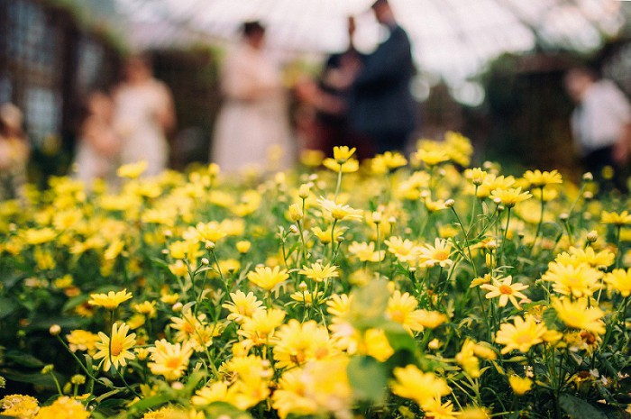 Intimate Southern Inspired Pittsburgh Wedding at Phipps Conservatory from Wild Native Photography Featured on Burgh Brides