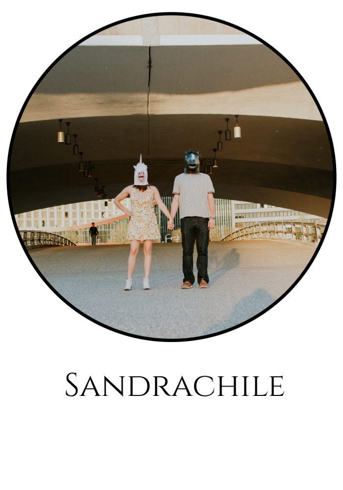 sandrachile-vendor-guide-image