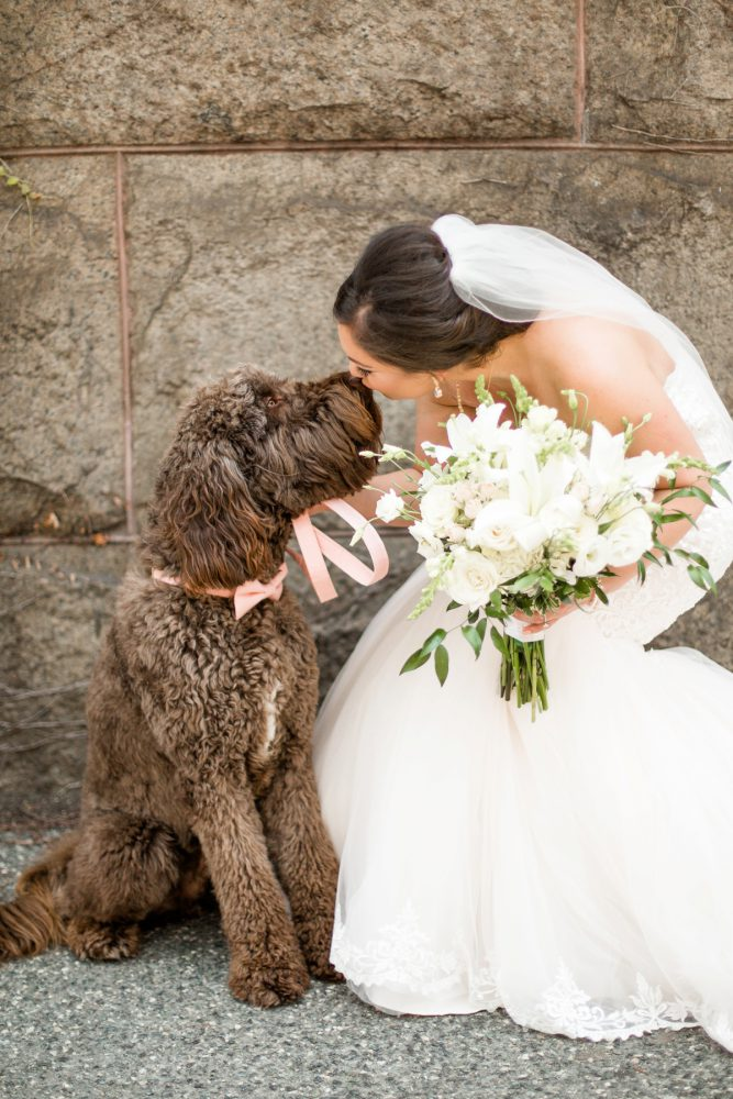 Dog Ring Bearer: Blush Pink Outdoor Wedding at the Allegheny County Courthouse from Jenna Hidinger Photography featured on Burgh Brides