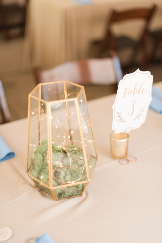 Terrarium Wedding Centerpieces: Sweet & Charming Wedding at the Pittsburgh Botanic Garden from Madeline Jane Photography and Olive & Rose Events featured on Burgh Brides
