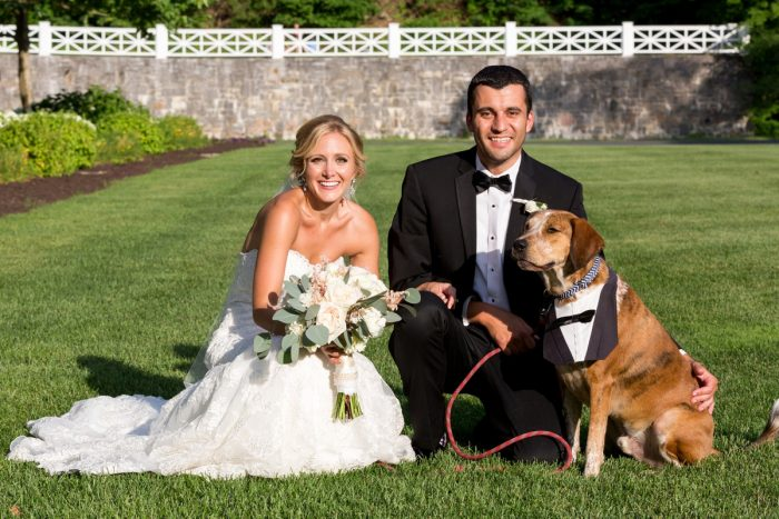 Bride and Groom with their Dog at Wedding: Elegant Blush & Gold Wedding from Annie O'Neil Photography featured on Burgh Brides