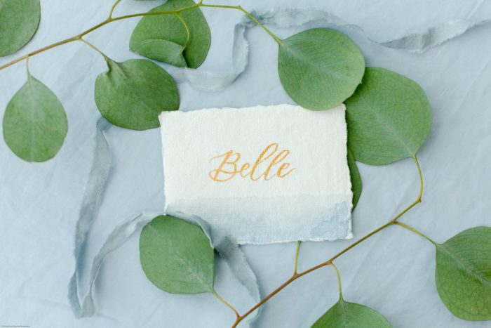 Dusty Blue Wedding Escort Cards with Gold Calligraphy: Fresh Garden Party Wedding Inspiration from Jackson Signature Photography & Joy Filled Occasions featured on Burgh Brides