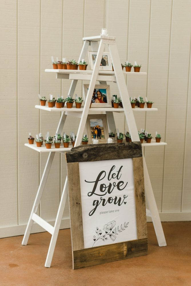 Succulent Wedding Seating Chart Display: Whimsical Greenhouse Wedding at Quality Gardens from Dawn Derbyshire Photography featured on Burgh Brides