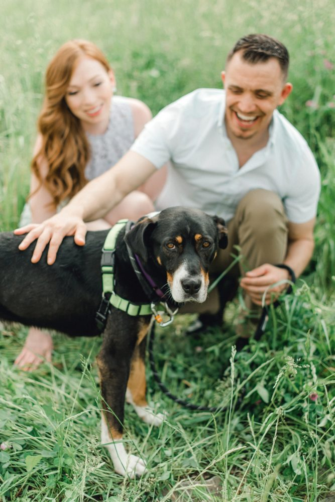 Dog Friendly Pittsburgh Engagement Session from Dawn Derbyshire Photography featured on Burgh Brides