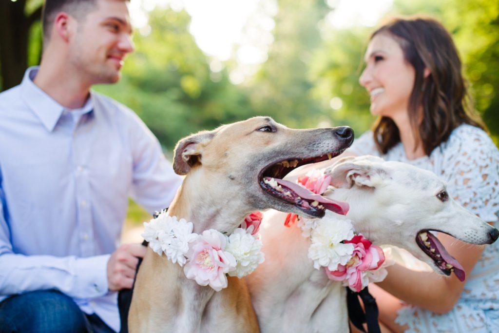Dog-Friendly Point State Park Engagement Session. For more engagement photo ideas, visit burghbrides.com!