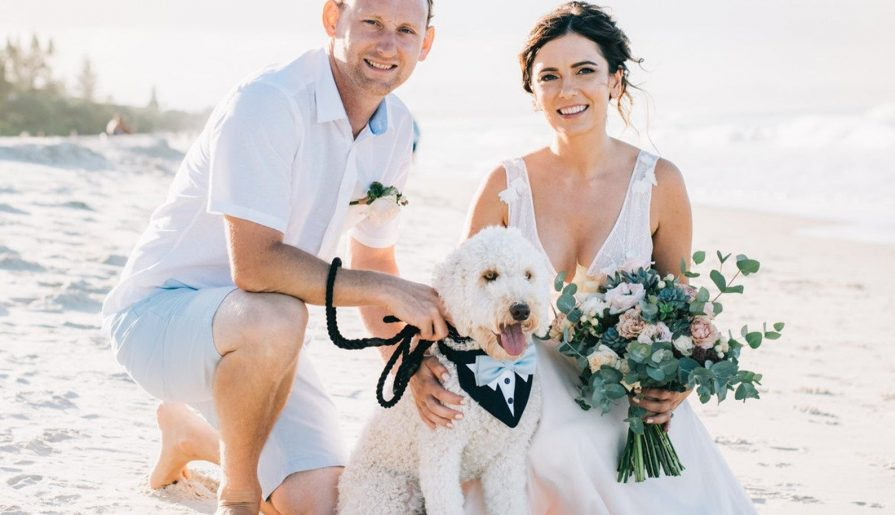 Wedding Accessories for Pets That Are Paws-itively Cute. For more pet-friendly wedding ideas, visit burghbrides.com!