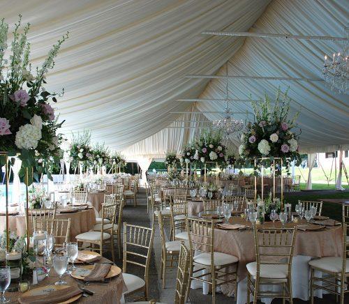 PartySavvy - Pittsburgh Wedding Rental Company & Burgh Brides Vendor Guide Member