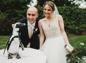 National Aviary - Pittsburgh Wedding Venue & Burgh Brides Vendor Guide Member